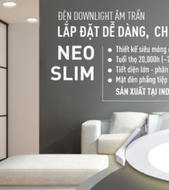 downlight neo slim